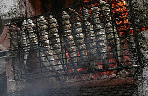 Sardines grill es la tomate lecomptoirdupetitgourmet - Sardine grillee au barbecue ...